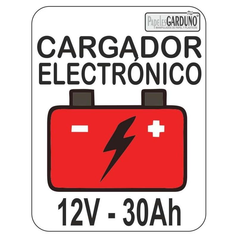 Cargador electronico de baterias 12v - 30Ah