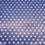 5091902 - Papel Regalo Lunares 70 - fondo azul